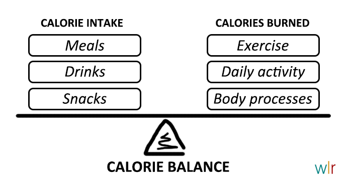 Calorie balance chart